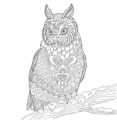 Owl adult coloring page vector