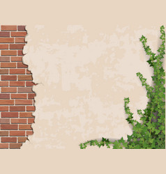 concrete wall ivy and brick vector image vector image