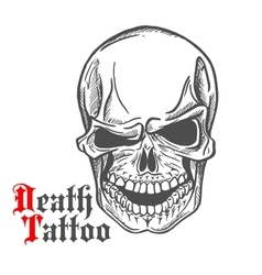 Skull sketch with spooky smile vector image