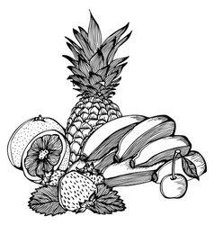 bananas lemon strawberry cherry pineapple drawing vector image vector image