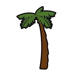 Isolated beach palm vector