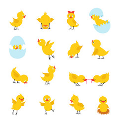 Cute chicks cartoon easter baby chickens with vector