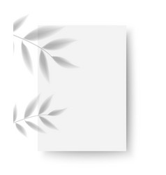 greeting or invitation card mockup template vector image