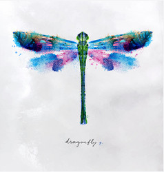 Monotype vivid dragonfly vector