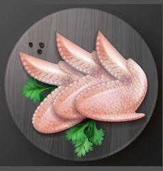 Raw chicken wings vector