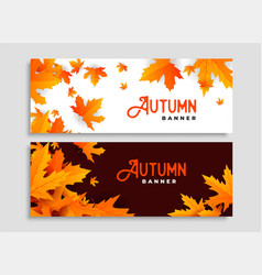 set of two autumn leaves seasonal banners design vector image