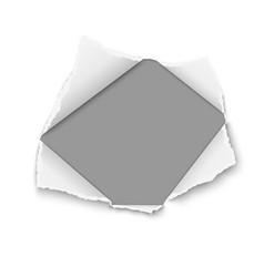 snatched hole in white paper with torn edges vector image