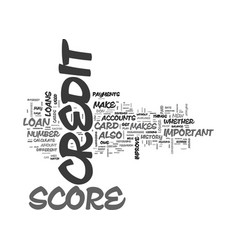 what you can do to improve your credit score text vector image vector image