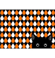 Black Cat Orange White Drops Background vector