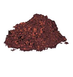 Cacao powder vector