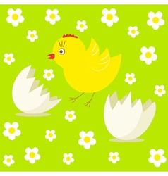 Cute chick and egg vector