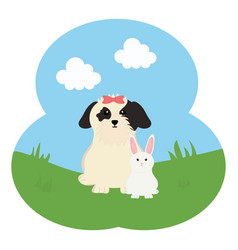 cute little rabbit with dog in field vector image