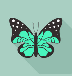 flat butterfly2 vector image