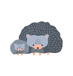 Hedgehog with baisolated on white background vector
