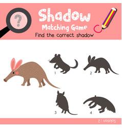 Shadow matching game aardvark vector