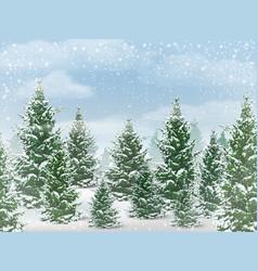 winter fir tree forest vector image