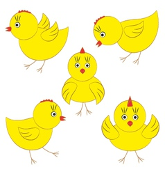Cute yellow chicks vector image vector image