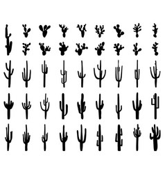 black silhouettes cactus vector image