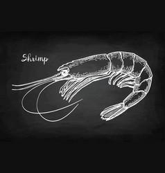 Chalk sketch shrimp vector