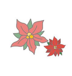 Christmas flower vector