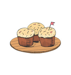 delicious sweet cakes or tasty cupcakes lying on vector image