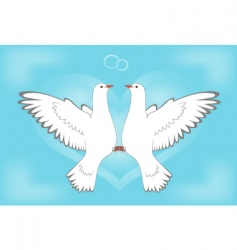 dove and love vector image