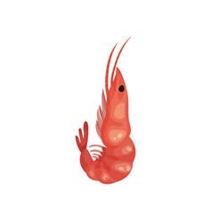 flat icon of big pink shrimp marine vector image