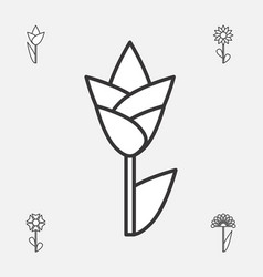 flower icon or symbol isolated vector image