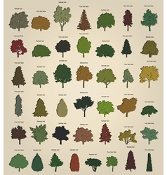 Set of retro trees vector image vector image