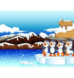 funny penguins under board sign with snow mountain vector image vector image