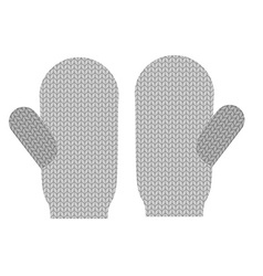 Knitted warm mittens Wool Winter clothing vector image vector image