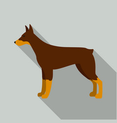 doberman icon in flat style for web vector image
