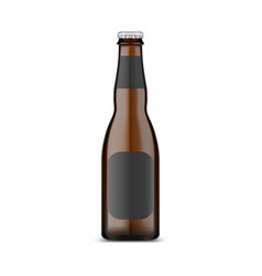 glassware craft beer bottle with metallic lid vector image