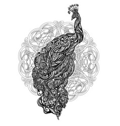 peacock tattoo vector image