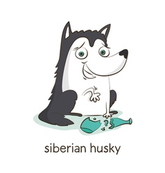 Siberian husky Dog character isolated on white vector image
