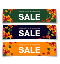 simple vouchers for autumn sale vector image