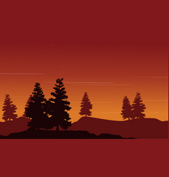 Spruce on hill landscape vector