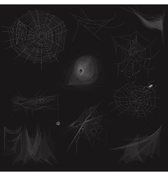 High quality set of spider web concept vector image