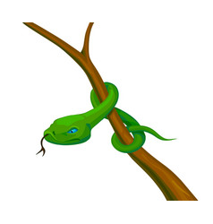 snake on a branch stock vector image