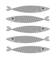 Sardine gray fish icon set iwashi sardina vector