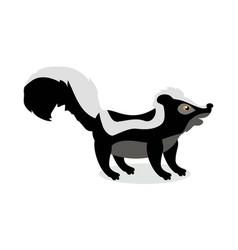 skunk cartoon in flat design vector image vector image