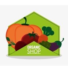 organic shop food natual products emblem vector image