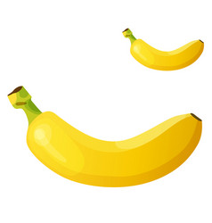 banana detailed icon isolated on white vector image