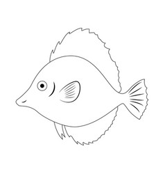 colorless fish isolated on vector image