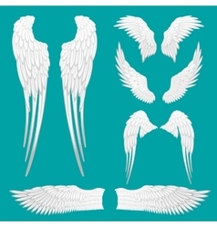 Heraldic wings set for tattoo or mascot design vector