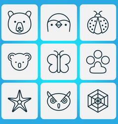animal icons set with paw spider web owl and vector image