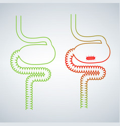 Intestine virus icon simple of intestine virus vector