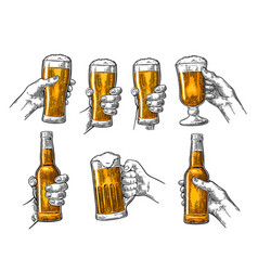 Man and woman hands holding clinking with beer vector