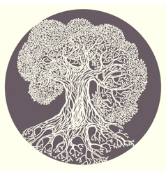 Oak tree Stylized isolated vector image
