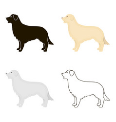 retriever icon in cartoon style for web vector image